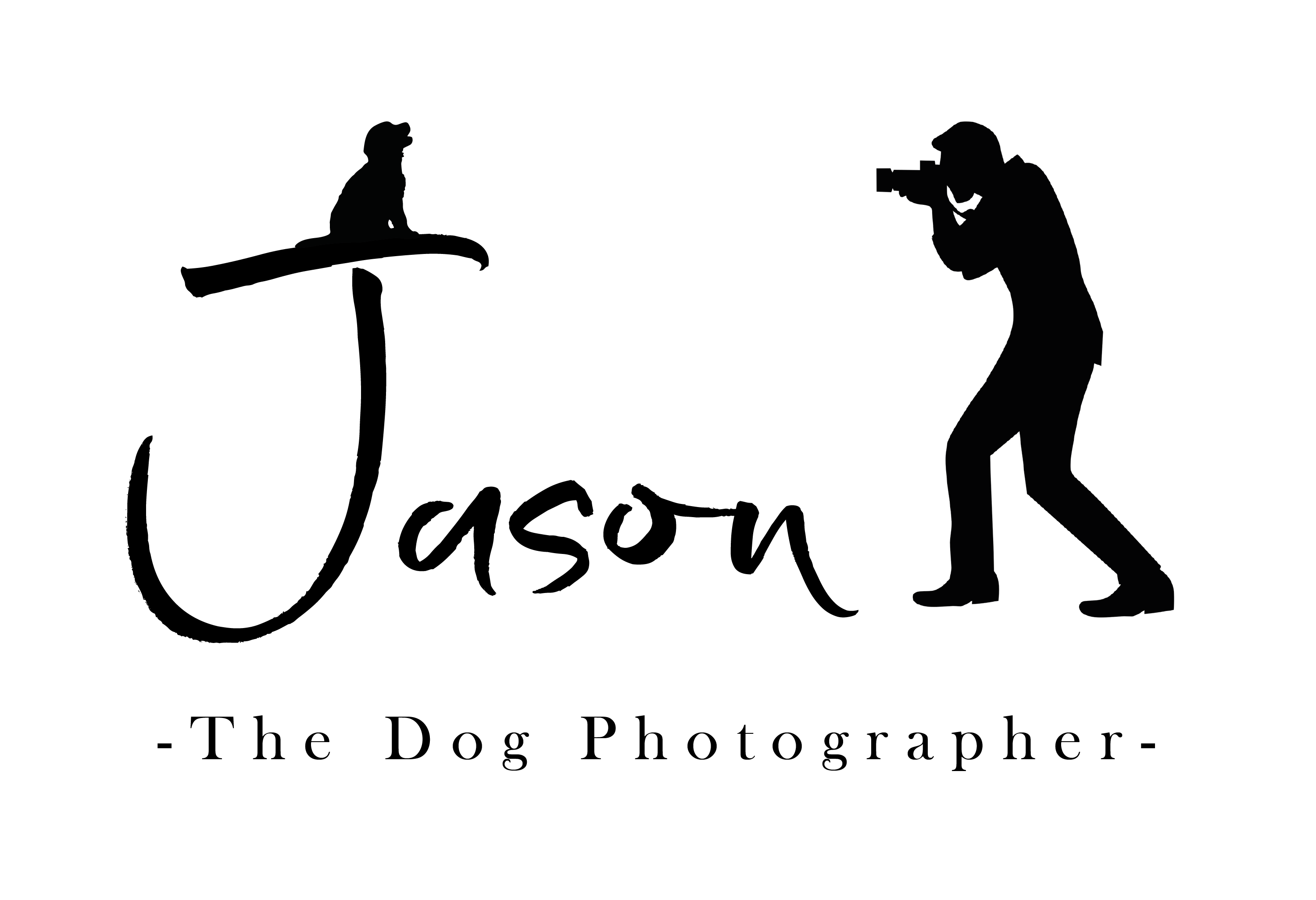 Jason Allison Pet Photography